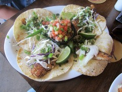 Fish Tacos: New Presentation